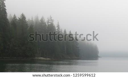 Belcarra regional park near Vancouver British Columbia Canada - 044