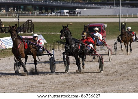 "BELGRADE,SERBIA-OCTOBER 16:Unidentified group horses and jockeys just before the finish line in race""Balaton-1"" on October 16, 2011 in Belgrade, Serbia"