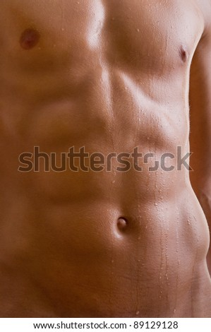 stock photo belly naked male body an athlete 89129128 October Glory Maple Tree The October Glory Maple is one of the most popular ...