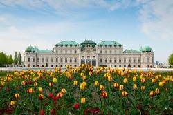 Belvedere palace Vienna Austria with spring flowers