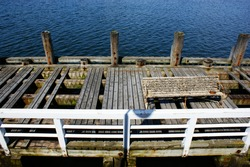 bench algae covered with algae, a bridge sunk in see water sheels on pier