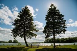 Bench between the trees in Thousand Islands National Park on St. Lawrence River, Ontario, Canada