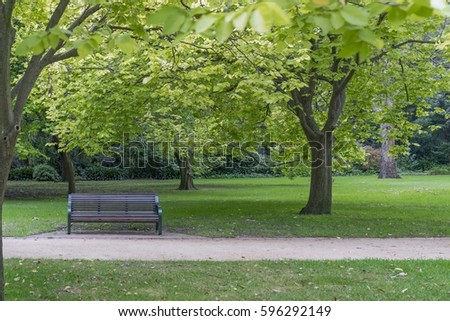 Bench in a park on a summer's day