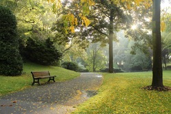 Bench in a park on a sunny autumn morning