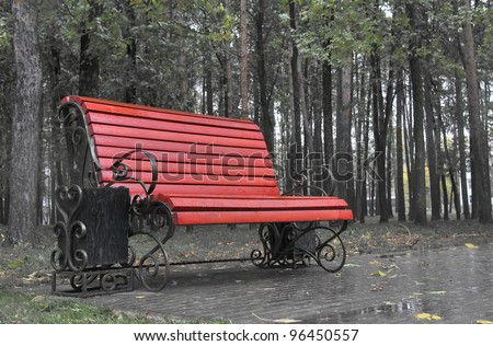 Bench in a rainy park