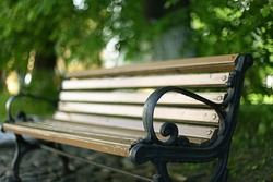 bench in a summer park recreation