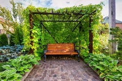 Bench in canopy overgrown with ivy, beautiful home landscaped garden. Stone paving in flower garden, landscape design of backyard. Nice landscaping with cozy arbor, concept of house rest and nature.