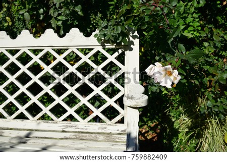 bench in flower garden #759882409