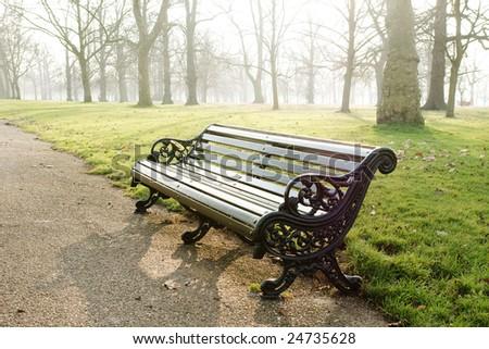 bench in park, fog, morning lightening