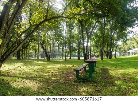 Bench in park is made of old wood ,for relaxation - Shutterstock ID 605871617