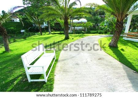 Bench in the green garden.