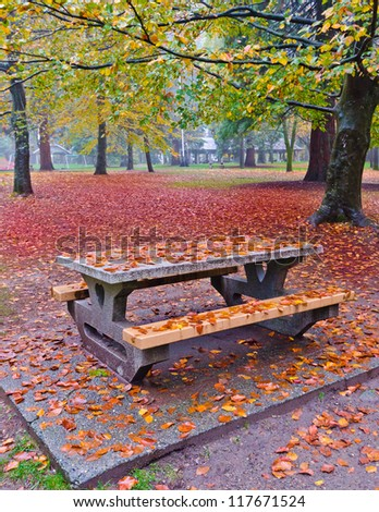 Bench in the park covered with red leafs in a grey, foggy, wet fall day.