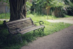 Bench in the park under big tree,vintage style image