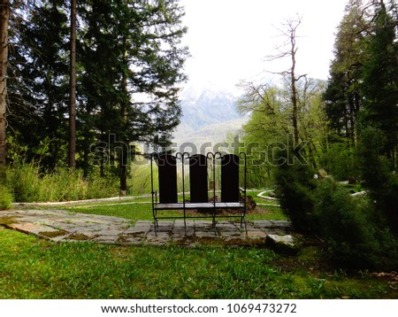 Bench in the woods #1069473272