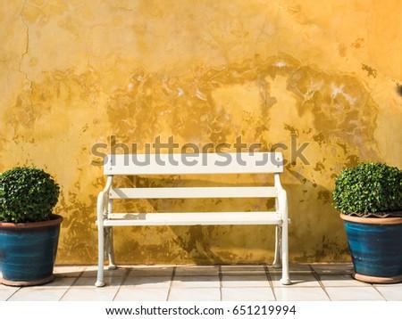 bench in vintage garden