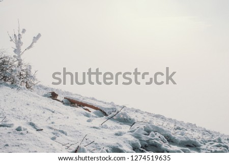 Bench made of half tree on top of snow mountain