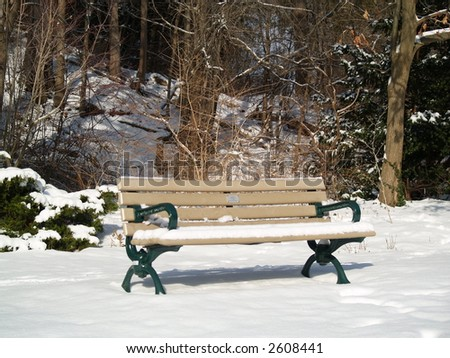 Bench on winter park