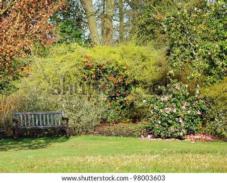 Bench seat in an english garden with a hedge filled with flowering rhododendrons