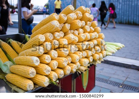 Bench selling boiled corn. Boiled corn and hot water in the boiler. Uncooked raw corns in front of countertop.