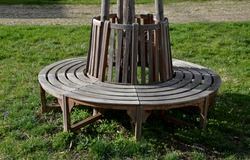 bench sitting round with wood paneling gray metal plate three seats around a tree around a gravel threshing path in the park lawn