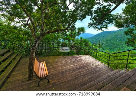 bench under the tree on the...