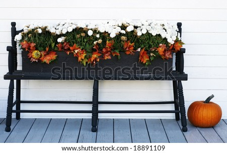 bench with orange and white mums and pumpkin