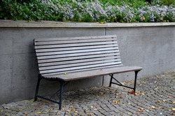 benches at the supporting gray supporting concrete wall in the park. Purple asters bloom above the wall in the flowerbed. wood paneled park bench with metalic black frame.