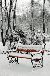 benches in the winter park filled in with the snow