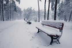 Benches in winter snowy park at morning