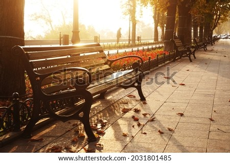 benches on the boulevard in an early autumn morning in a sunny fog. Odessa. Ukraine. Primorsky Boulevard. Photo stock ©