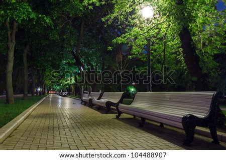 benches on the pavement in the light of a lantern at night in summer park