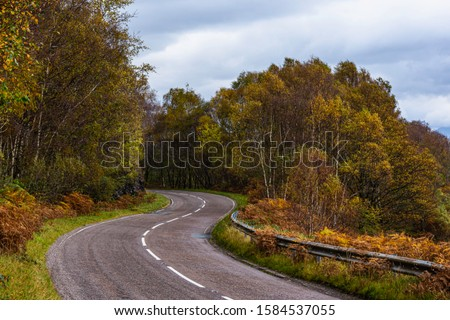 Bendy, country road in Scottish highlands  with autumn coloured trees on both sides.Scenic drive on british countryside.S-shape road in rural Scotland.Diminishing perspective.