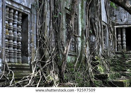 Beng Mealea is a temple in the Angkor Wat style located 40 km east of the main group of temples at Angkor, Cambodia.