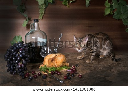 Bengal cat on the table and still life with fried chicken, grapes and wine