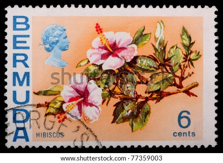 BERMUDA - CIRCA 1970: A 6-cent stamp printed in Bermuda shows flowers and leaves of a hibiscus plant, circa 1970
