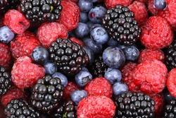Berries collection. Raspberry, blueberry, blackberry, cherry