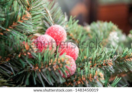 Berries in the needles. Christmas tree decorations and decorations in the design.