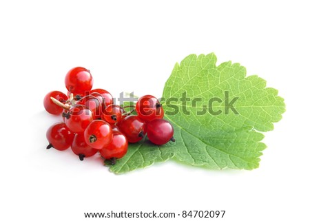 Berries of a red currant with leaf on a white background