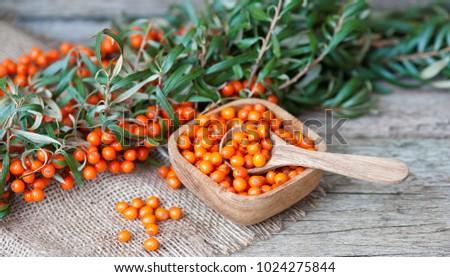 berries of sea-buckthorn on a wooden table, sea buckthorn oil  #1024275844
