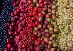 Berry assorted - mix of white and red currants, raspberries, strawberries, gooseberries, sweet cherries. Summer harvest - background. Berries of different colors and shapes.