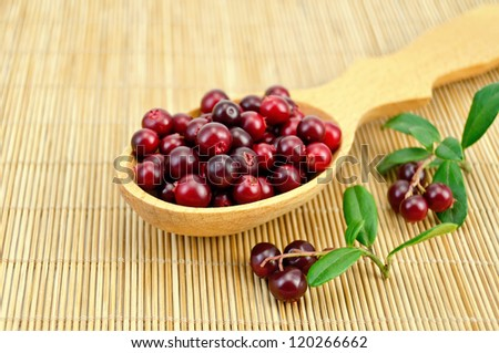 Berry cowberry in a wooden spoon, two branches with berries and leaves on a bamboo mat