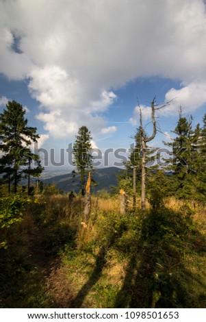Beskid ma?y. Karpaty, Polska, summer, mountains, Leskowiec Zdjęcia stock ©