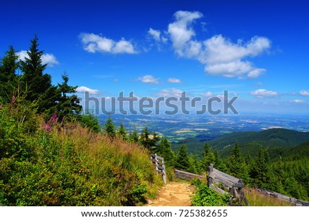 Beskydy mountains at east Czechia Moravia view from Lysa Hora mountain with conifers in summer popular tourist destination countryside of Czech Republic Bohemia central Europe