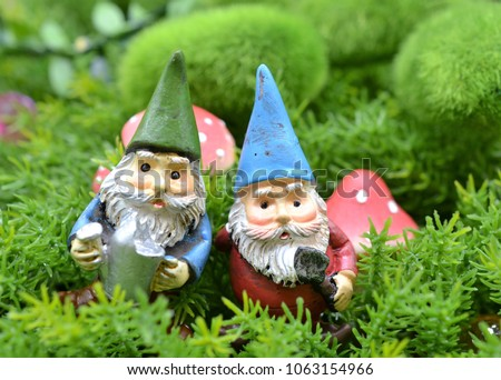 Best friends elderly men fairy garden gnomes in enchanted forest with green moss and mushrooms