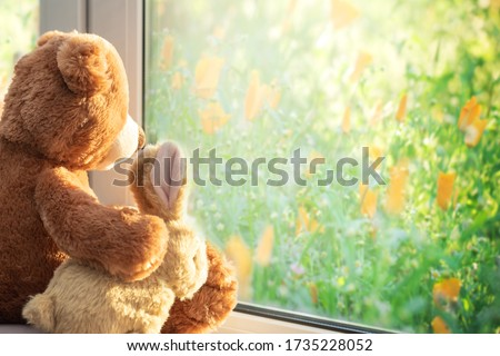 Best friends teddy bear and bunny toy sitting on window sill hugging each other and looking out of window on sunny summer day. Love, family and friendship concept.  Foto stock ©