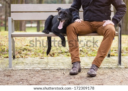 Best friends: Young man sitting with his dog on a bench in the park