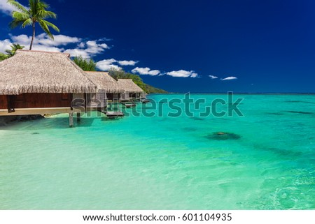 Best overwater bungalows on a tropical island with vibrant beach and palm tree #601104935