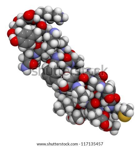 pri-orgazme-virabativaetsya-endorfin