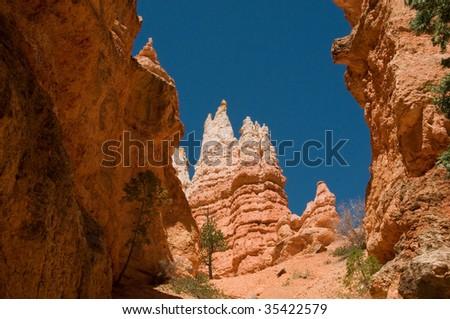 Between Bryce Canyon hoodoo's