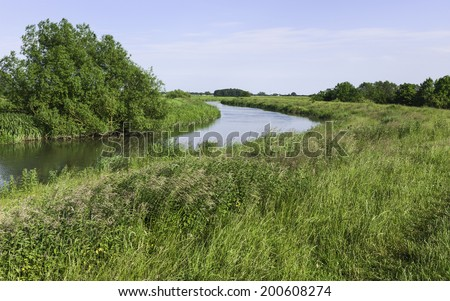 Beverley, Yorkshire, UK. The river Hull and its banks covered in flora and grasses on a fine summer evening near Beverley, Yorkshire, UK.